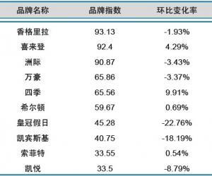 2013年11月中国酒店业国际品牌发展报告