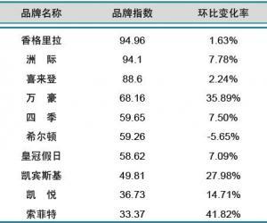 2013年10月中国酒店业国际品牌发展报告