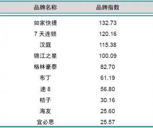 2014年1月中国酒店业经济型品牌发展报告