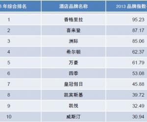2013年度中国酒店业品牌发展报告(榜单)