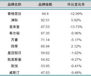 2014年3月中国酒店业国际品牌发展报告