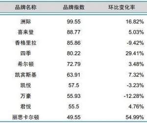 2014年5月中国酒店业国际品牌发展报告